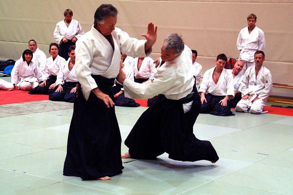 budo_aikido-2013-004